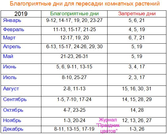 Когда лучше пересаживать цветы: время пересадки, жизненные циклы цветов, сроки пересадки, необходимые материалы и рекомендации специалистов - sadovnikam.ru