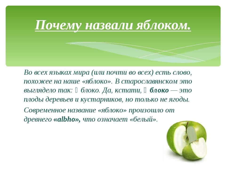 Почему темнеют яблоки изнутри (и при хранении и при созревании) и другие «яблочные» проблемы | сайт о саде, даче и комнатных растениях.