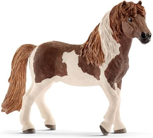 Голландская теплокровная лошадь: описание, характеристика, история возникновения породы