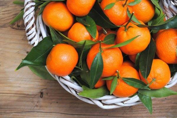Эфирное масло мандарина: полезные свойства и применение