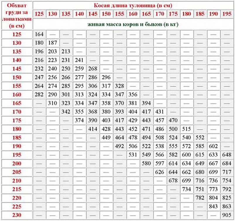 Как узнать вес крс по замерам таблица, таблица крс живой вес