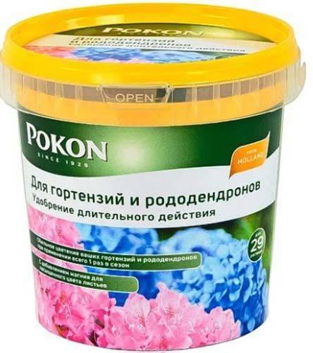 Посадка гортензии весной в открытый грунт - pocvetam.ru