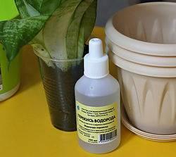 Нашатырный спирт (аммиак) для растений в саду и огороде: применение подкормки как удобрения и от вредителей