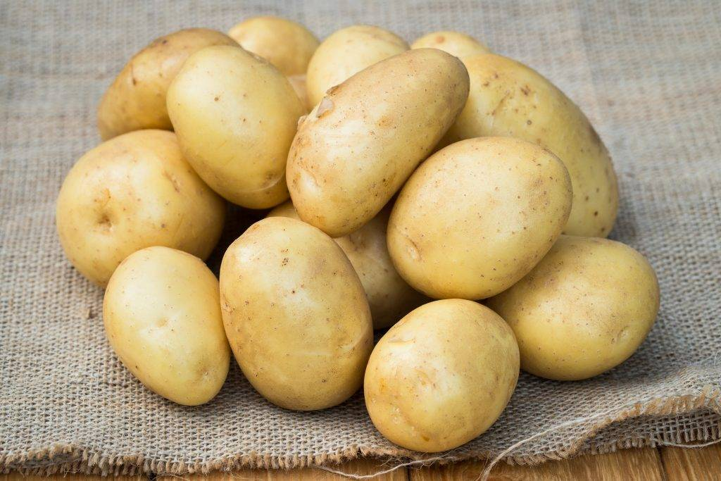 Один из лучших сортов картофеля — бриз. описание, фото, рекомендации по выращиванию