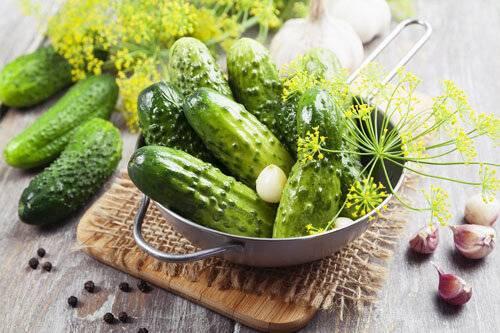 Калорийность огурца на 100 грамм, сколько калорий и бжу в огурце
