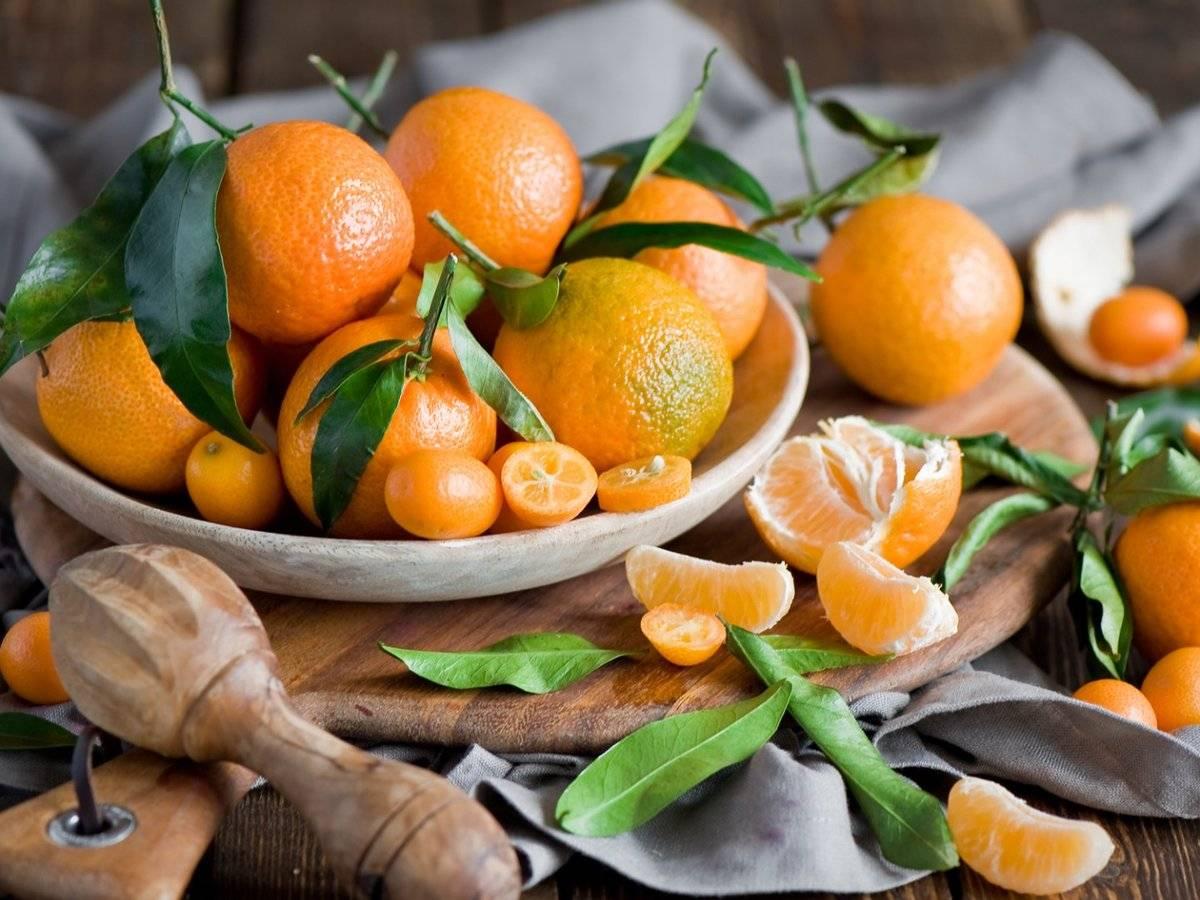 Аллергия у ребенка на апельсины фото