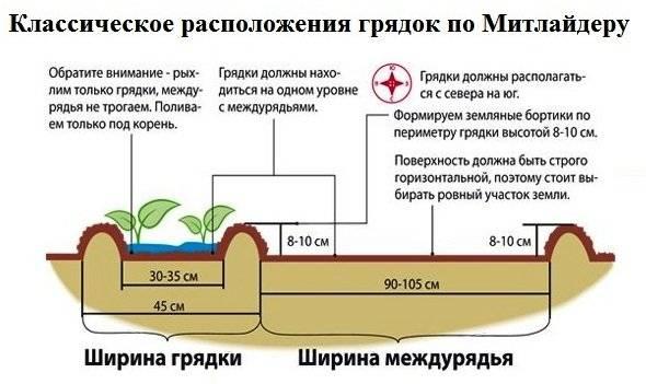 Выращивание картофеля по методу митлайдера: суть метода, особенности посадки и ухода, преимущества, отзывы