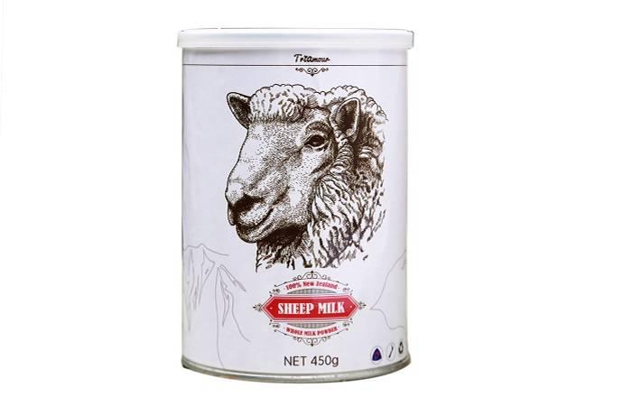 Овечье молоко — польза и вред, состав, применение, противопоказания
