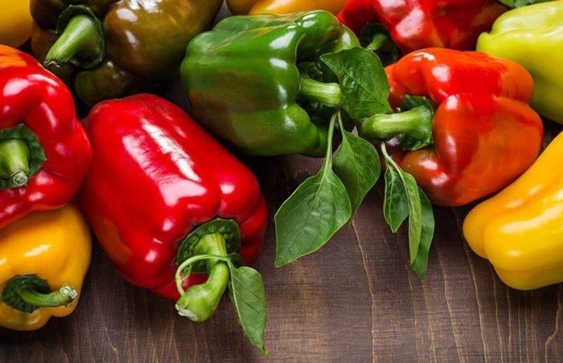 Лучшие сорта семян болгарского перца