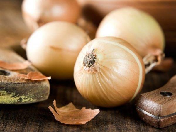 Раннеспелый сорт лука для универсального применения «стригуновский местный»