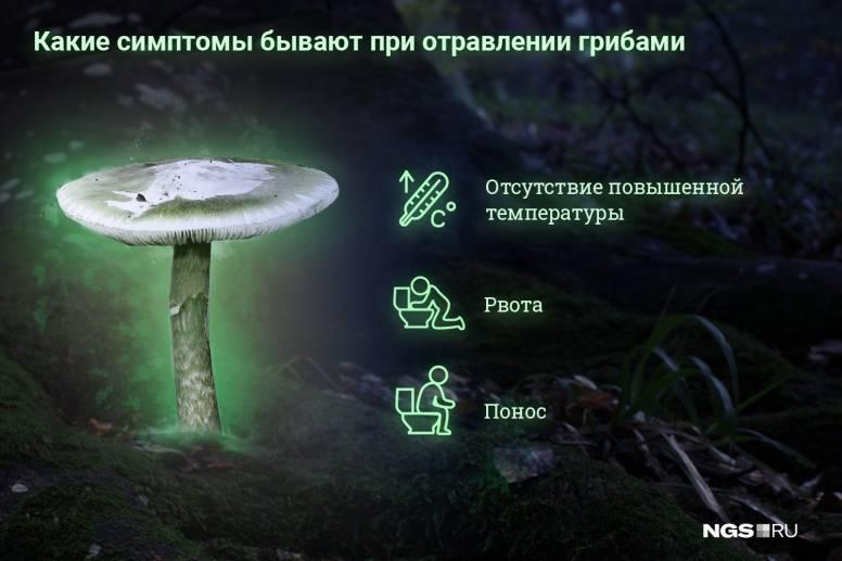 Отравление грибами: симптомы, первая помощь, лечение   мрикрнц.рф