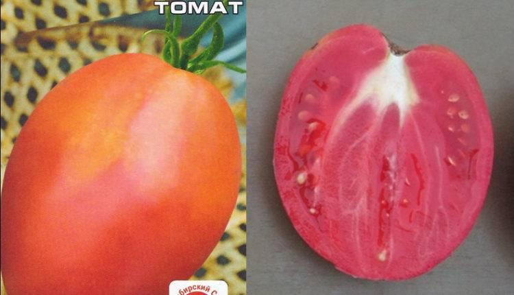 Томат толстой f1 - описание сорта гибрида, характеристика, урожайность, отзывы, фото