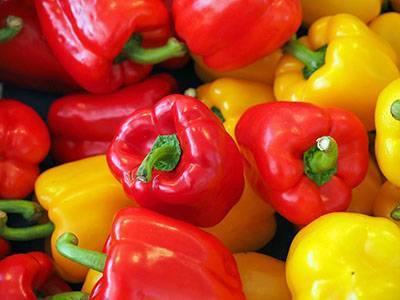 Выбираем урожайные сорта перца для регионов с учетом срока созревания на 2021 год