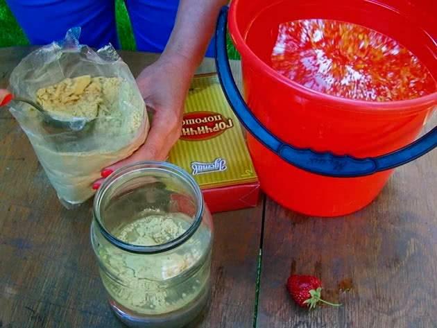 Применение горчичного порошка на огороде