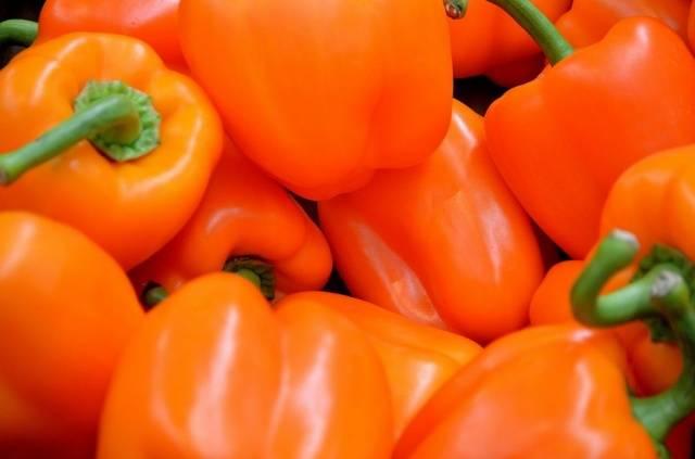 Перец биг мама: характеристика и описание, урожайность сорта, отзывы, фото
