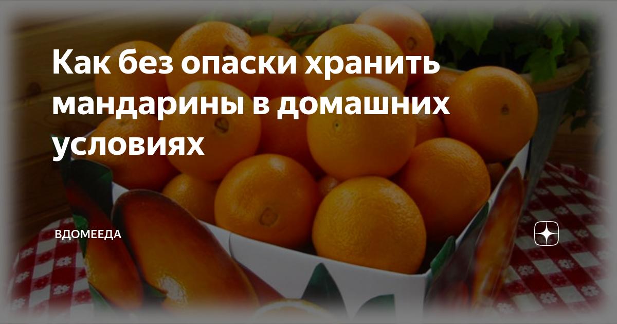 Как и сколько хранить мандарины в домашних условиях — selok.info
