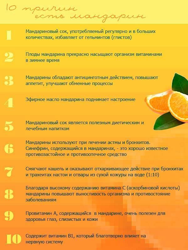 Какие фрукты и ягоды можно кормящей маме? | компетентно о здоровье на ilive