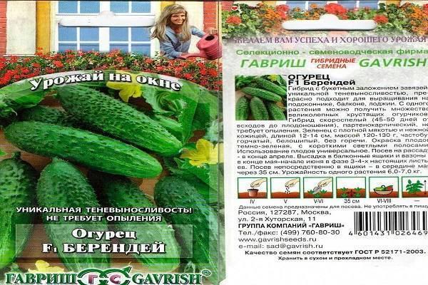 Характеристика огурцов сорта берендей - агро журнал dachnye-fei.ru