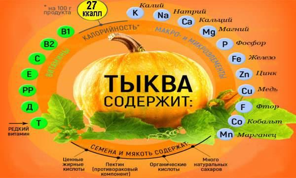 Тыква: польза и вред для организма человека, лечебные свойства сырой