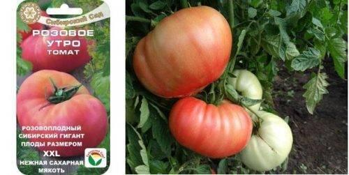 Томат розовое чудо: характеристика и описание сорта помидор