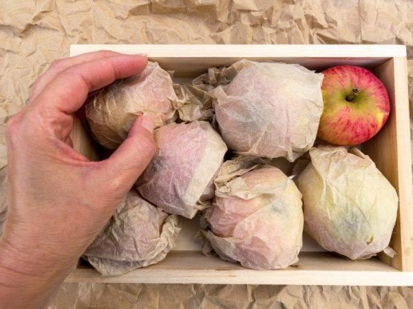 Как заморозить яблоки в домашних условиях на зиму в морозилке - всё про сады