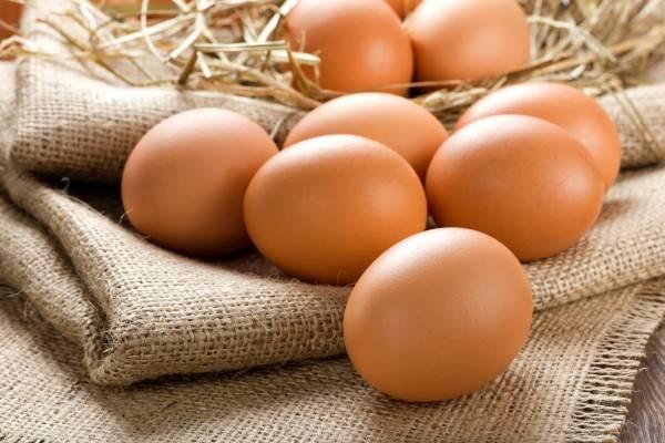 Тонкая скорлупа у куриных яиц: причины, что делать, чем кормить