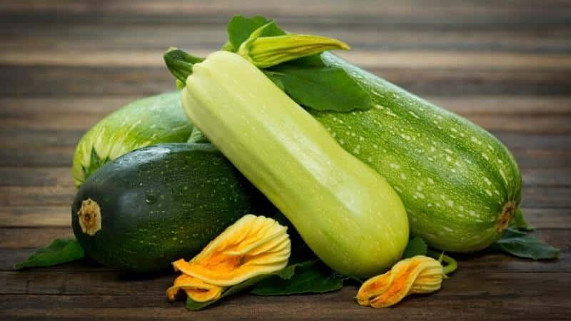 Чем отличаются цукини и кабачки: в чем разница?