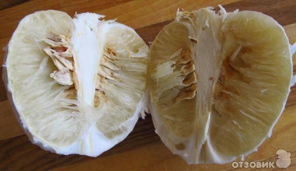 Что нужно знать перед покупкой помело. как выбрать сочный и спелый фрукт