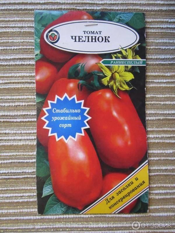 Томат челнок: характеристика и описание сорта, урожайность, отзывы с фото
