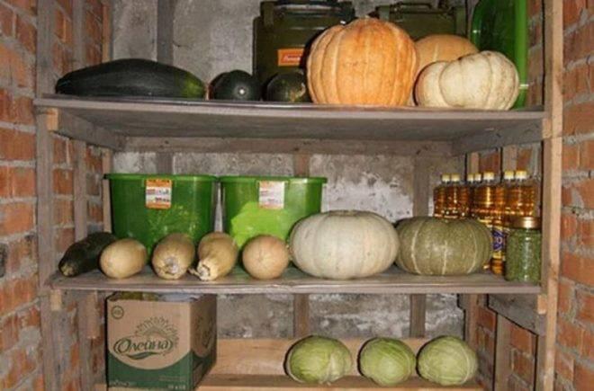 Как хранить свежие кабачки в домашних условиях
