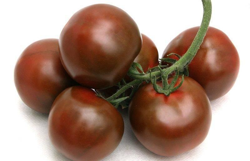 Томат виагра - описание сорта, характеристика, урожайность, отзывы, фото