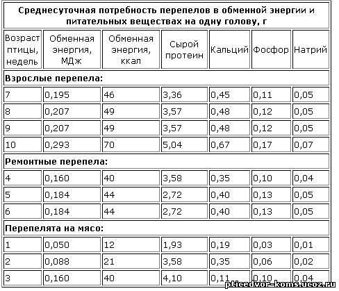 Комбикорм для перепелов: состав, виды, правила кормления   3 cпособы приготовления своими руками