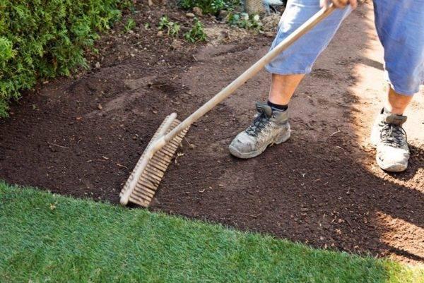 Подготовка участка под газон и посев травы: как вывести сорняки и подготовить землю