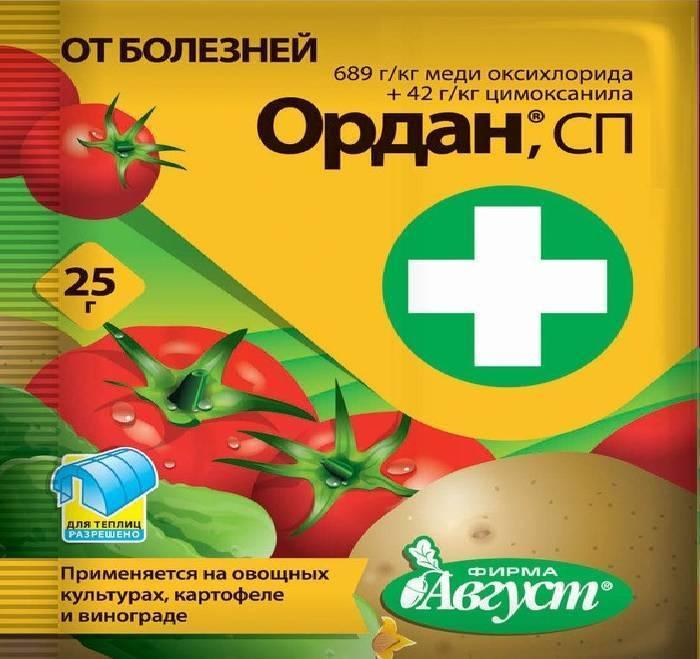 Фунгициды для томатов: инструкция по применению, механизм действия, критерии выбора