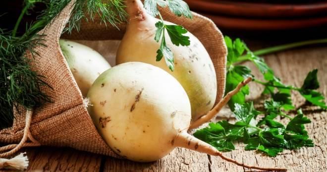 Необычный сорт редиса – арбузный. что это за овощ, как его выращивают и используют в кулинарии?