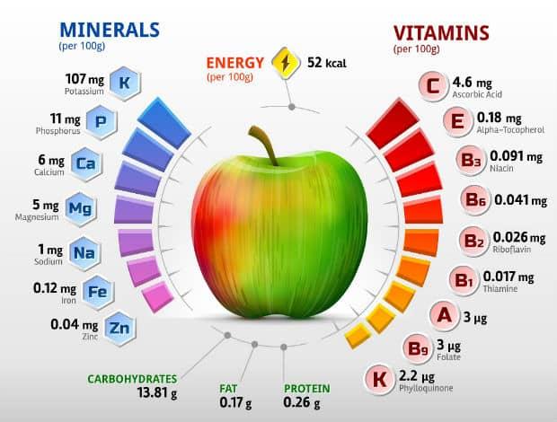 Польза и вред яблок- состав, пищевая и энергетическая ценность