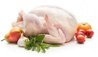 Индейка (мясо): польза, вред, состав и калорийность