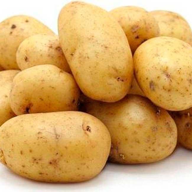 Описание и характеристика сорта картофеля джелли, правила посадки и уход
