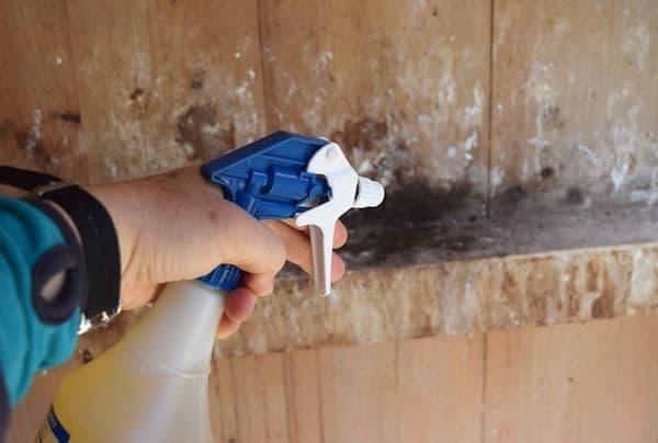 Дезинфекция курятника в домашних условиях: в присутствии птицы, йодом, дымовыми шашками, известью, препараты, средства