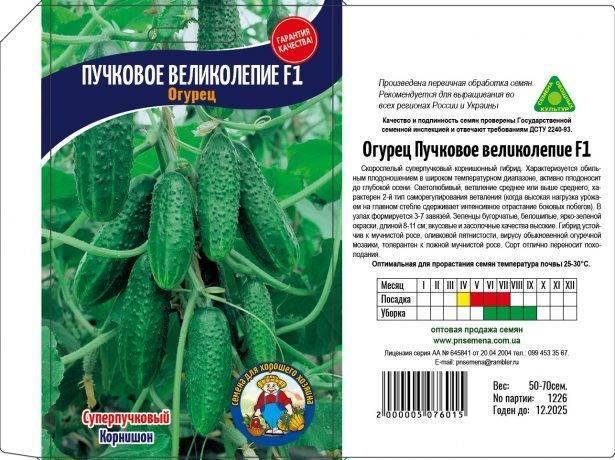 Огурец мэлс f1: описание сорта, отзывы и урожайность, фото