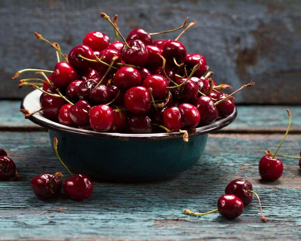 Сорт вишни призвание: описание с фото