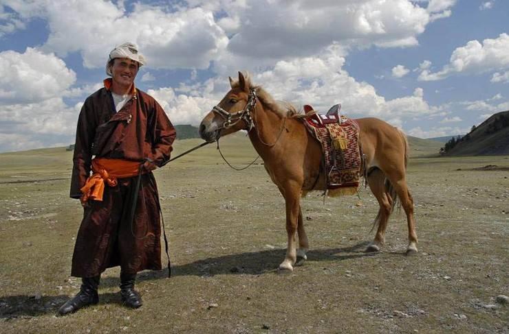 Монгольская лошадь — википедия