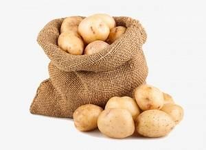 Сорта картофеля - как выбрать самый лучший сорт для своего участка?