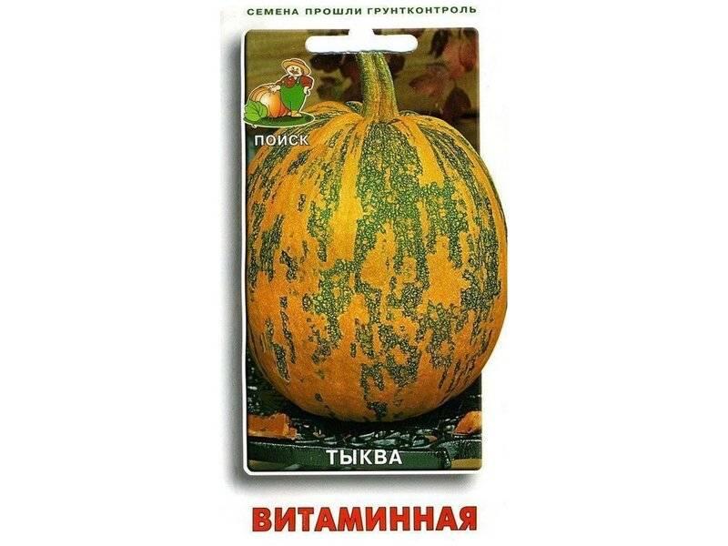 Особенности тыквы сорта «витаминная»