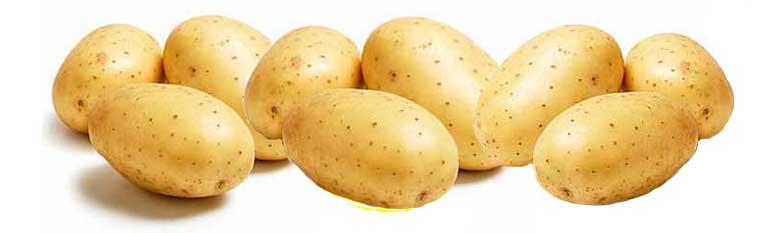 Польза и вред картофеля для здоровья человека |