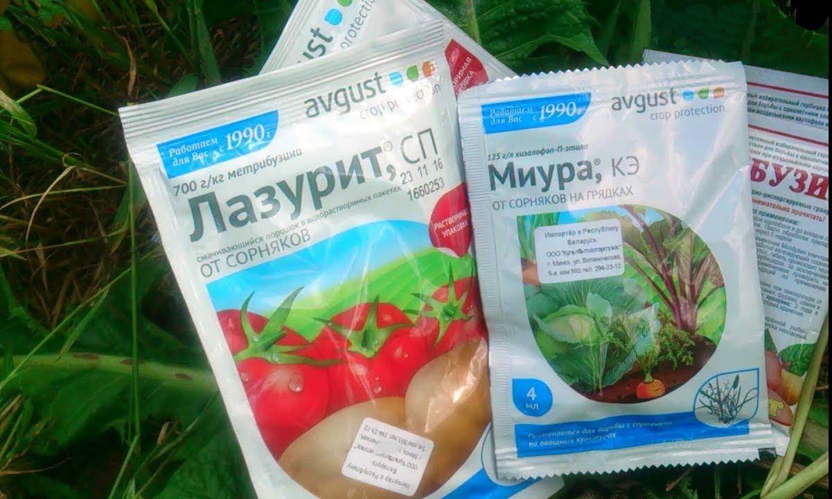 Титус: гербицид для химической прополки картофеля, томатов, кукурузы