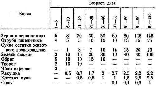 Комбикорм для перепелов: состав, нормы кормления, рецепт для приготовления своими руками