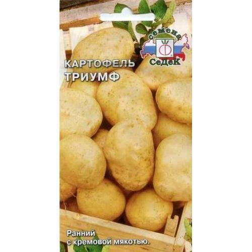 Картофель «триумф»: описание сорта, характеристики, фото и особенности ухода