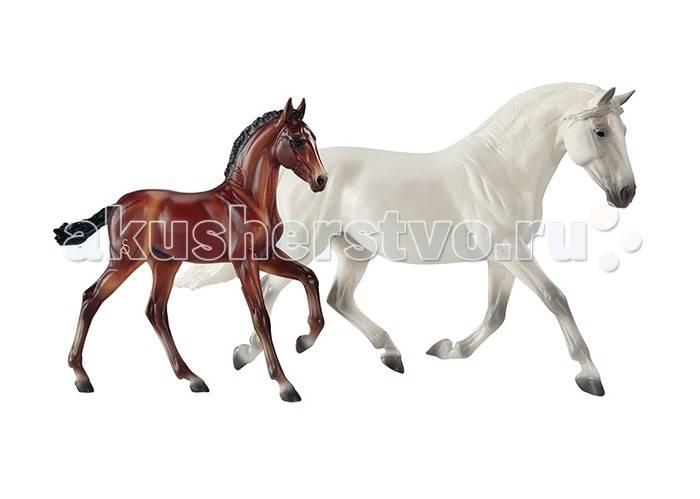 Темперамент и нрав лошадей. виды поведения
