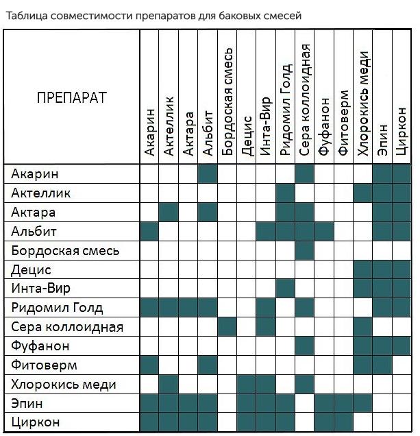 Фунгициды для винограда: сроки обработки и правила применения